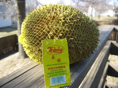 durian-net.jpg